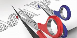 Gene Editing/ CRISPR