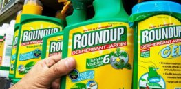 Even as public opposition to glyphosate grows, some French winemakers denounce ban of Monsanto's Roundup Pro 360