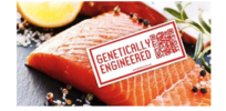 Viewpoint: Food security decisions—like GMO salmon approval—shouldn't be left to pubic's whims