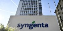 Syngenta settles with Nebraska farmer for 'rushing' GMO corn to market before Chinese approval