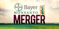 What's behind EU's skepticism of Bayer-Monsanto merger?