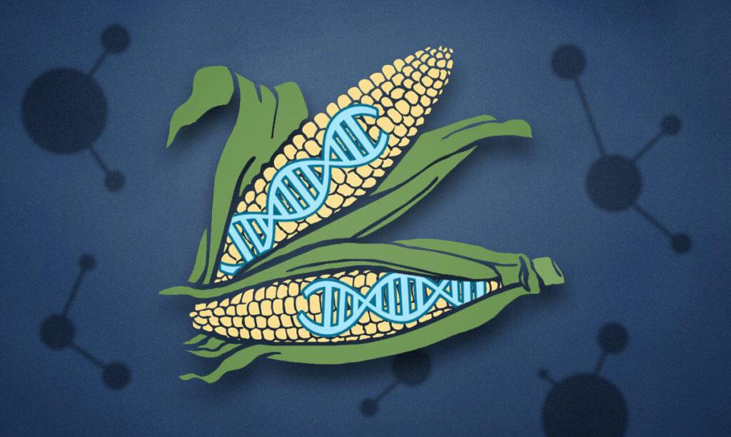 CRISPR superplants e