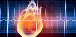 Are cardiac stem cells a 'fountain of youth'?