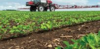 Partial ban of dicamba herbicide approved by Arkansas Plant Board