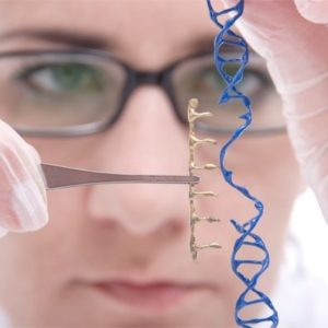 Commonly confused Difference between GMOs gene editing and genetic engineering e