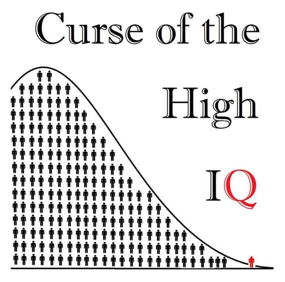 Curse of the High IQ Cover e
