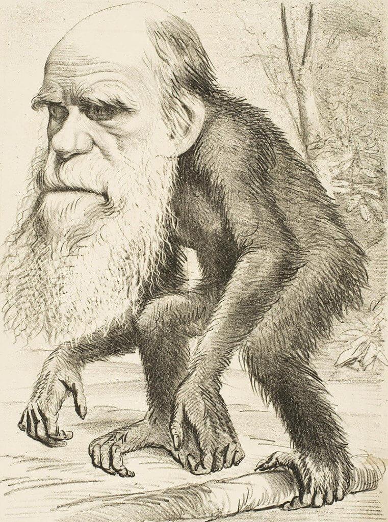 Editorial cartoon depicting Charles Darwin as an ape x