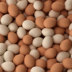 Eggs Chicken Fresh Table Eggs farm fresh