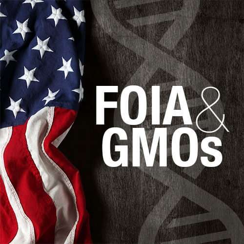 Viewpoint: Europe's anti-GMO activists copy smear tactics of extremist US organic lobbyists