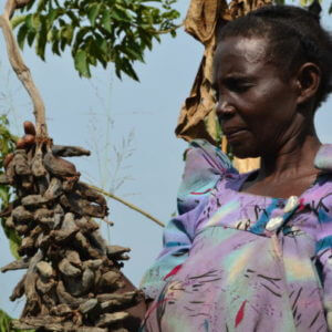 Frances Nanziri Ugandas Food Evolution Farmer x