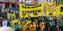 German GMO Protest x