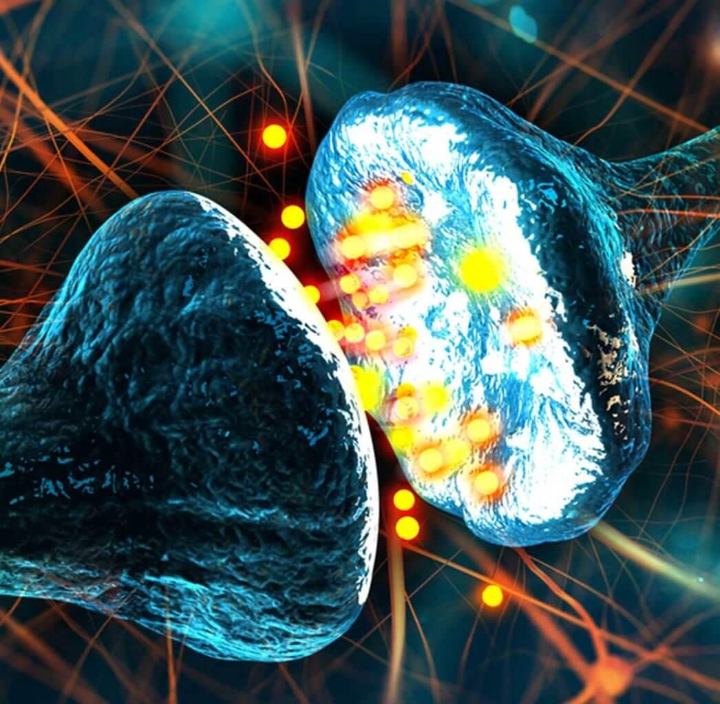 Neuron Doctrine Featured Image LARGE e