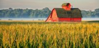 How the Midwest became the Silicon Valley of agriculture