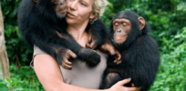 Evaluating ape intelligence is as complicated as measuring human IQ