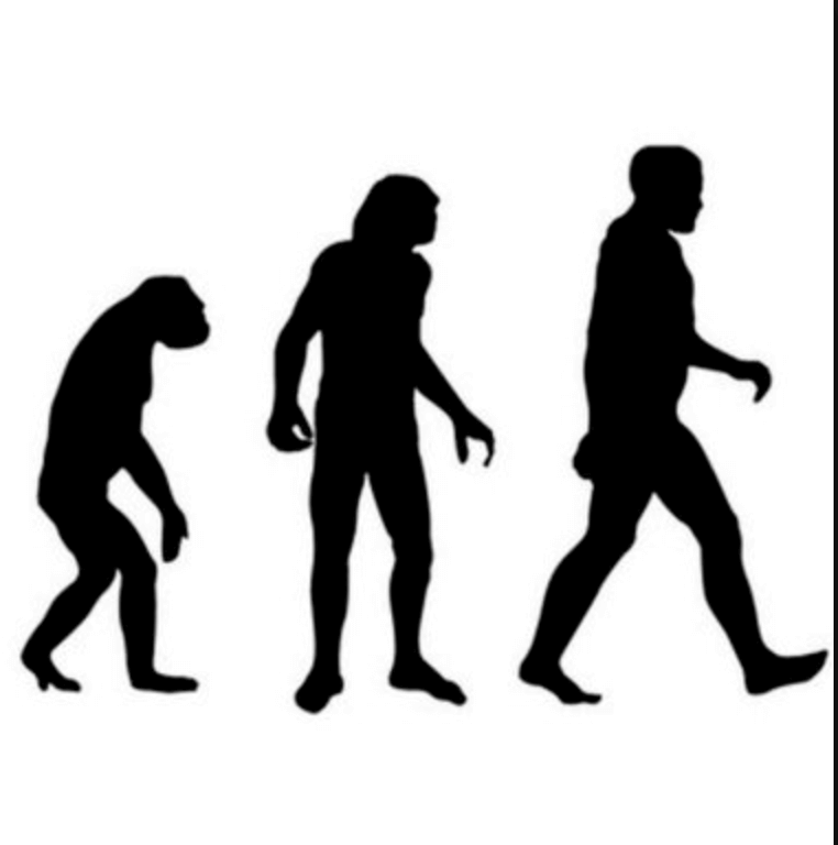 an examination of the evolution of humans The philosophical issues that relate to research on animal cognition can be to those in human cognition, and include an examination of human evolution.
