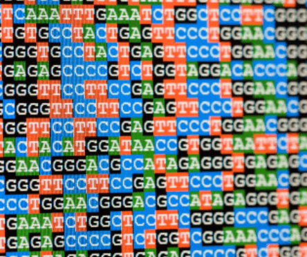 How do you know if your mutation will lead to a genetic disease?