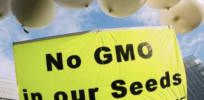 NGO opposition to GMO, gene-edited crops not rooted in emotion and dogma, research suggests