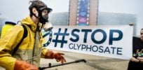 French scientist calls for inquiry into IARC's 'misbehavior' on glyphosate cancer study