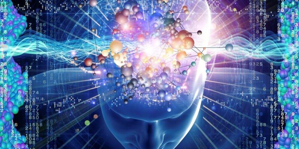 Seeking human consciousness at the cellular level