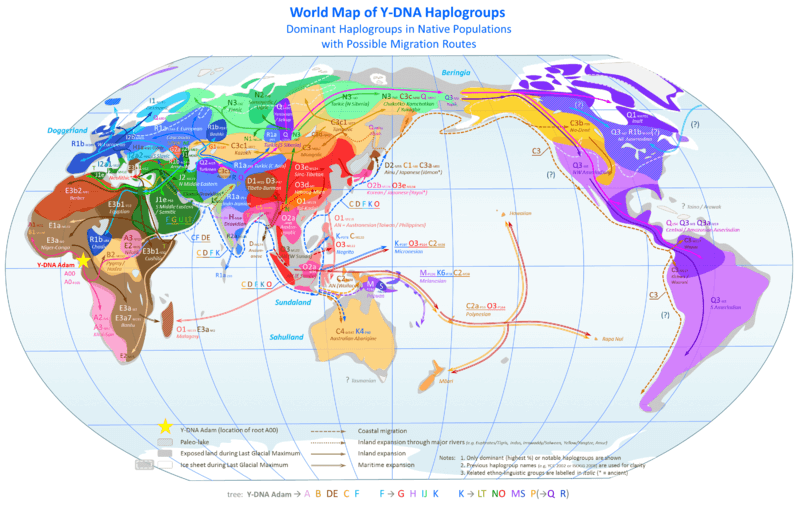 Y DNA: Redrawing map of Europe, North Africa and Middle East