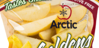 Non-browning genetically engineered 'Arctic apples' now on sale--without GMO label