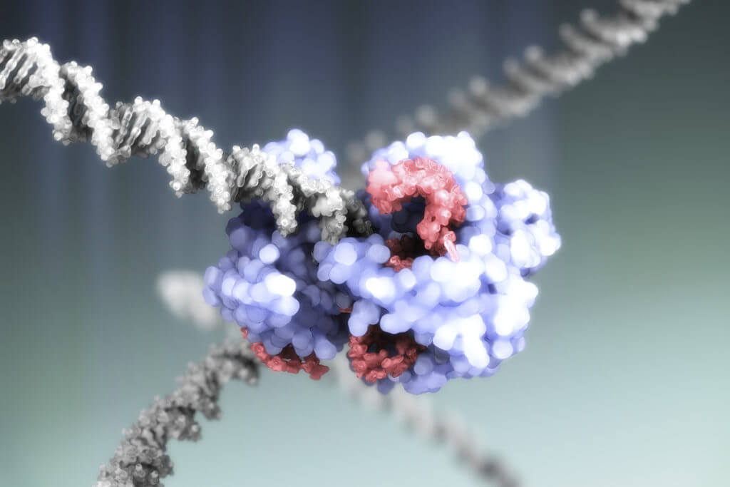 c crispr cas gene editing complex illustration spl