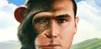 chimpshumans