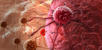 Why does testicular cancer respond better to chemotherapy? Stem cells