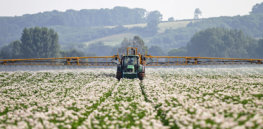 China's adoption of GMO cotton launched 25-year decline in 'hazardous' pesticide use