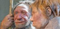 ct ancient humans cannibalism