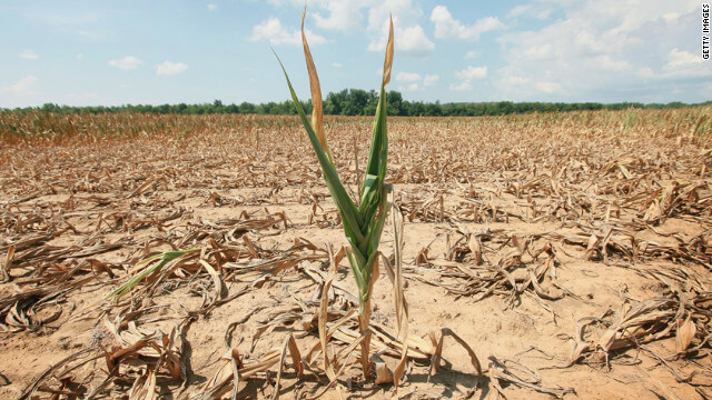 drought tolerant corn Credit truth about trade
