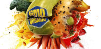 Ecomodernist podcast: Food Evolution film about 'confirmation bias' in foodie and anti-GMO community
