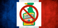 French farmers warn glyphosate pesticide ban would halt conservation agriculture
