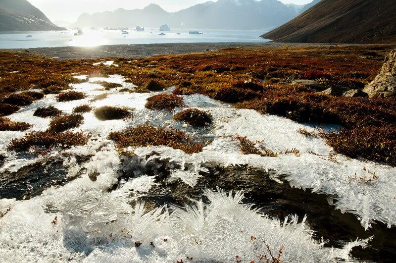 Deep freeze: Will climate change awaken long-frozen diseases?