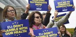 glyphosate protesters