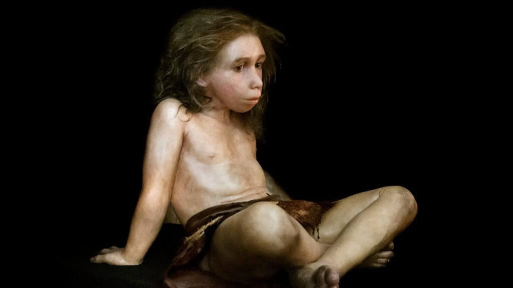 neandertal boy