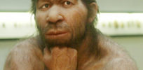 What do your Neanderthal genes do?