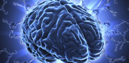 IQ debate: How much of intelligence is determined by genetics?