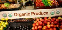 Viewpoint: 'Blistering' USDA organic report suggests 'movement' needs major reforms