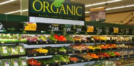 Eating organic food reduces risk of some cancers, controversial study claims