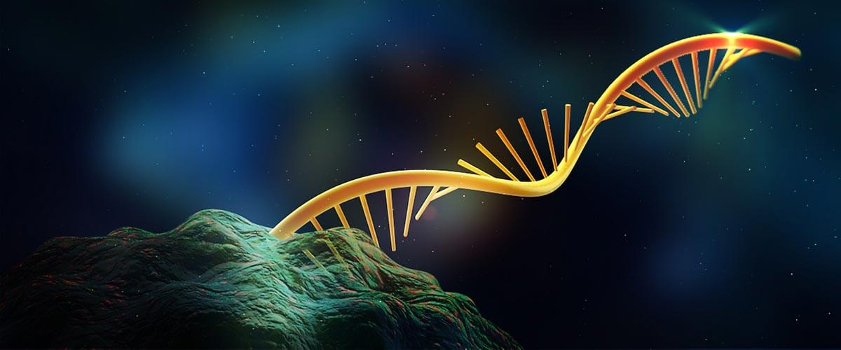 Targeting RNA with CRISPR could reverse half of known pathogenic point mutations