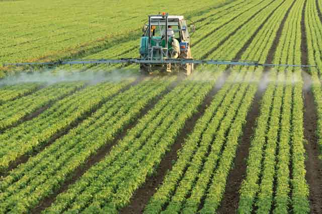 roundup herbicide chemical glyphosate poses health dangers