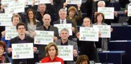 sn Anti GMO Protest