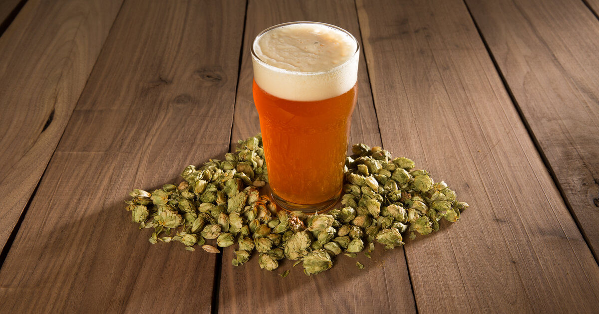 Mildew-resistant GMO hops could revive once-thriving New York beer brewing industry
