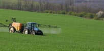 As France phases out common pesticides, regulator says farmers still need crop chemicals to control new plant diseases