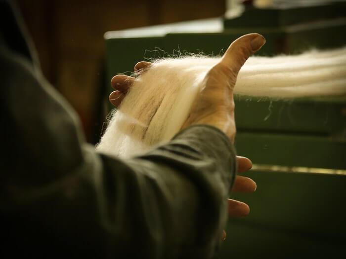 wool IL