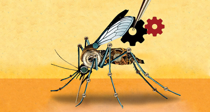 Gene drives: Nature editorial board calls out green groups for 'unfair attempt to create damaging and polarizing spin'