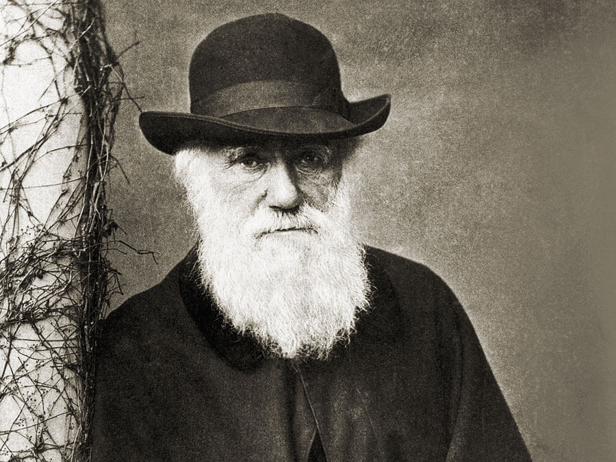 charles darwin revolutionized genetic studies with new ideas of natural selection Charles darwin was an english naturalist who studied variation in plants and animals during a five-year darwin's ideas caused a lot of natural selection.
