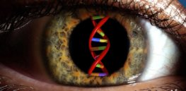 FDA approves first gene therapy for a genetic disease—onetime cure for rare blindness