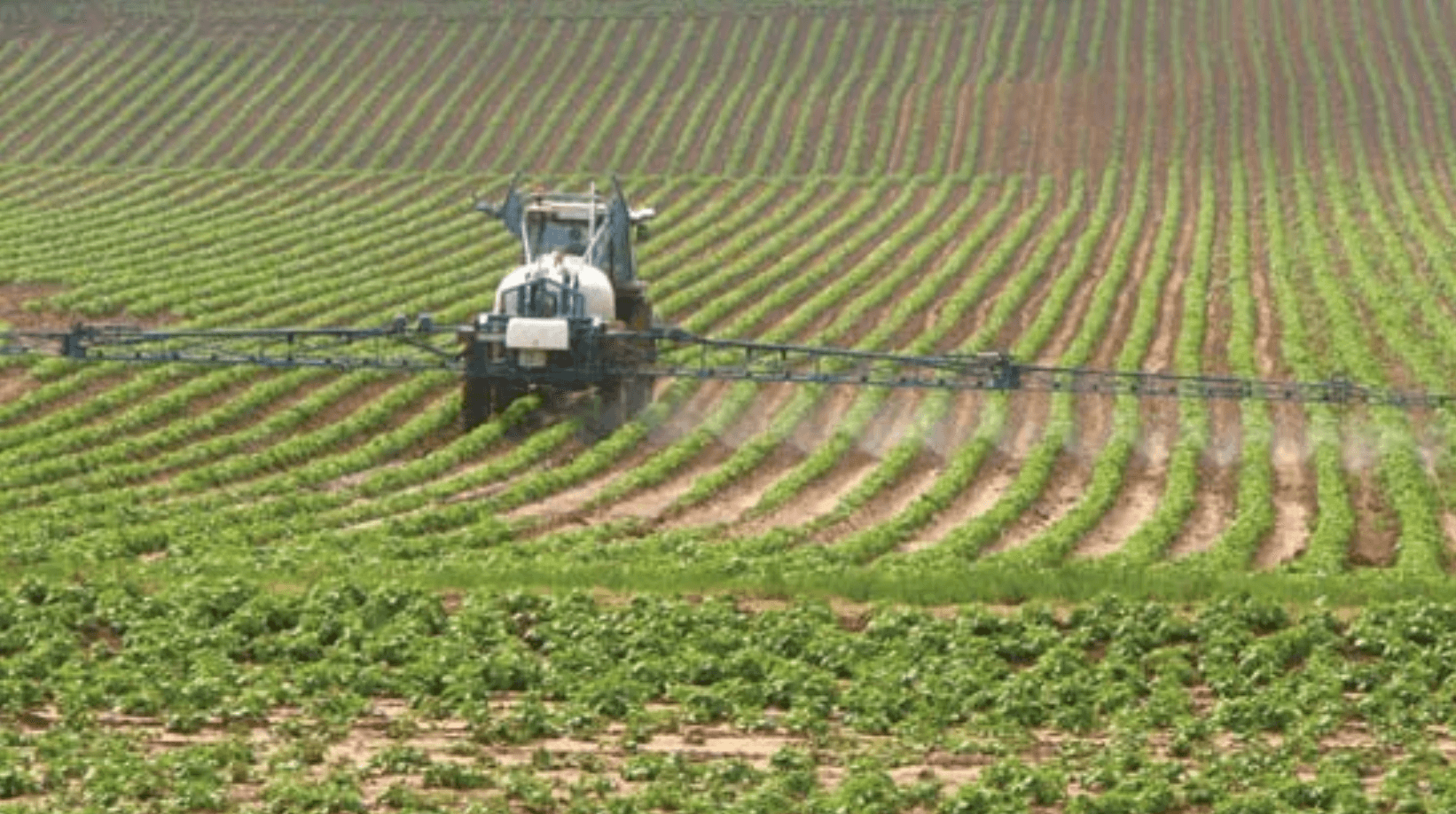Viewpoint: Why it's time to start talking about a glyphosate herbicide replacement